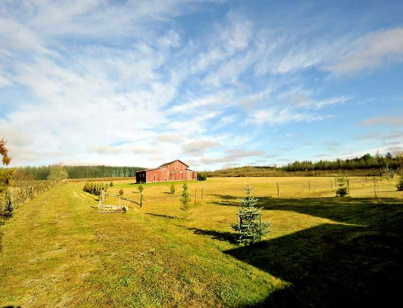 10 Acres, Older Barn, Storage, East Garafraxa For Sale