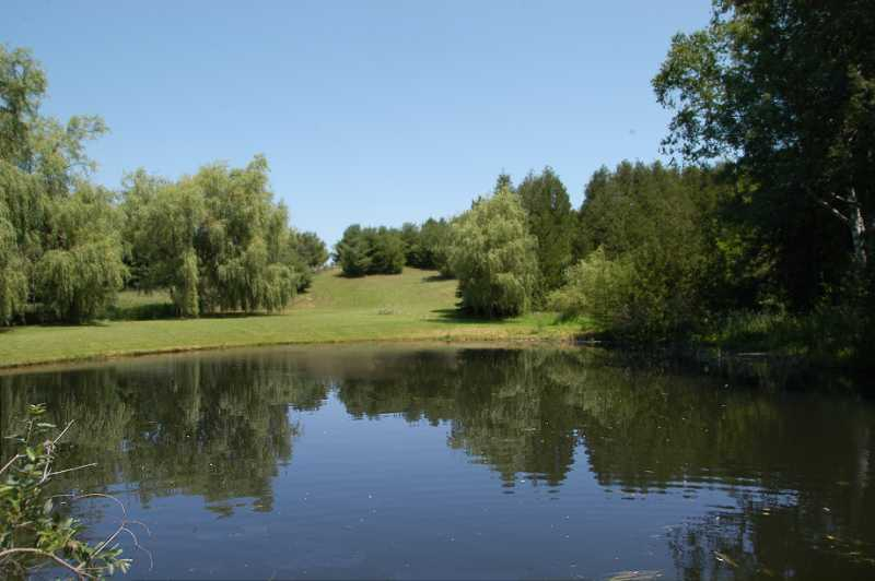 spring fed pond, rolling land, forested open areas