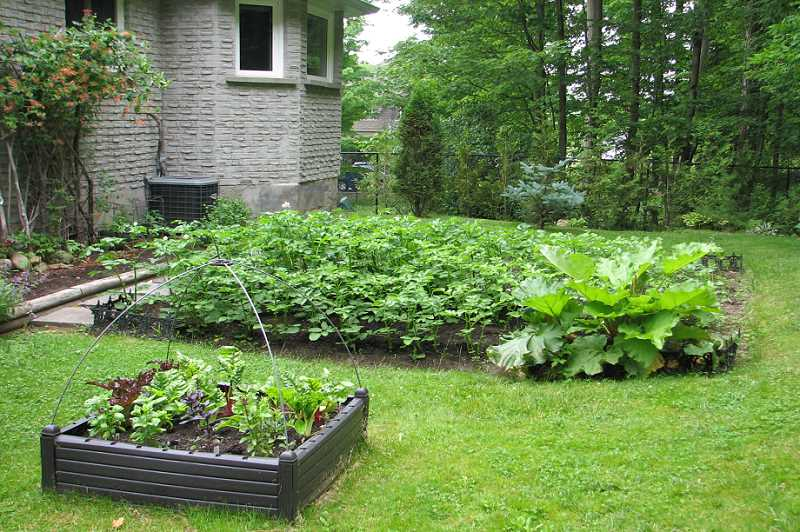 Perennial & Vegetable Gardens, lot size is 131 x 263 feet
