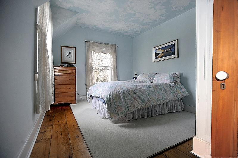 closet, plank flooring, bedroom
