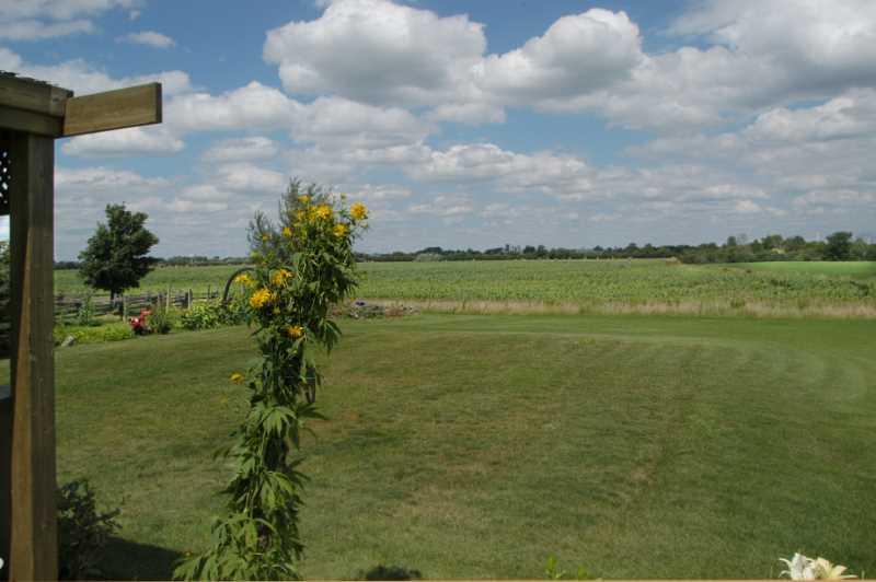 farmers fields, country views