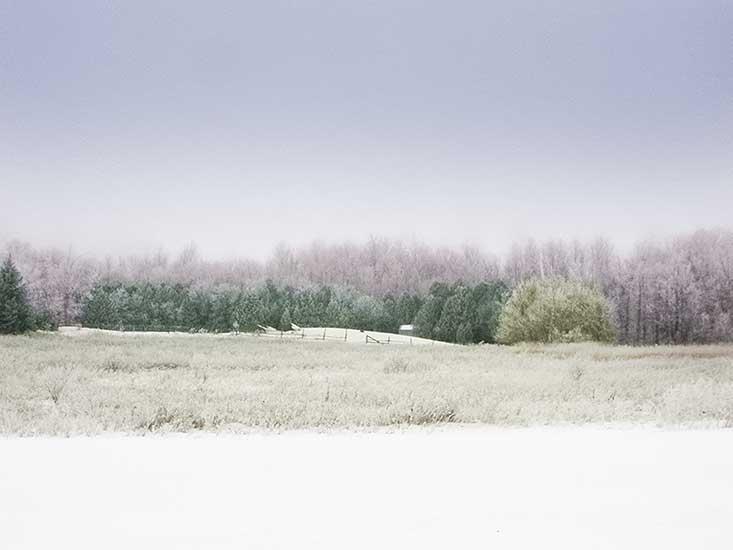 Country Views, Winter scene, 10 Acres, Orangeville
