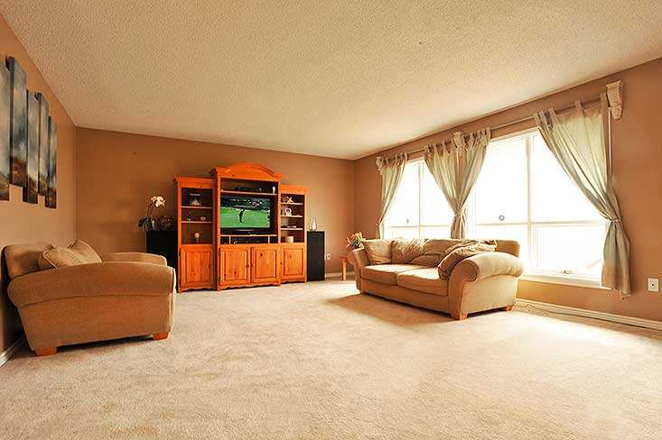 Natural Light, Family Room