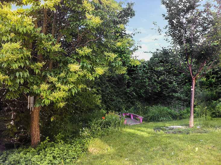 716 Bush Street, Backyard, picturesque, stream