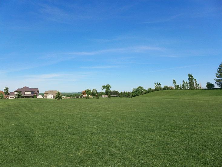 Backyard, Hockley Valley