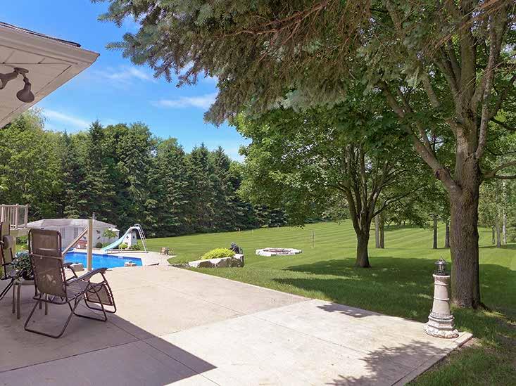 Backyard, views, mature trees