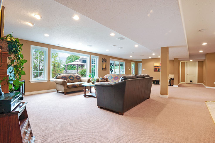 Bright Open concept basement