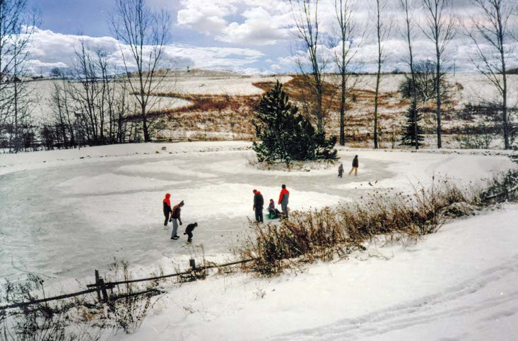 skating in mulmur, ontario, 20 acres, home for sale, bungalow