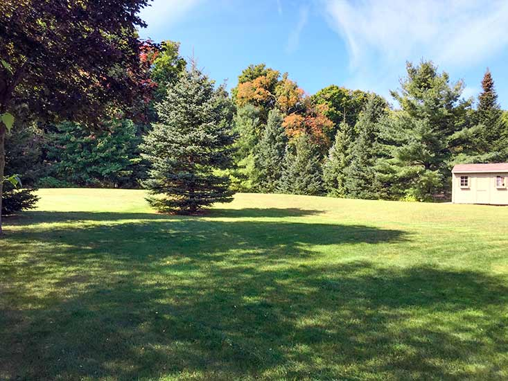 Backyard, Caledon East, Mature Lot, Caledon Country