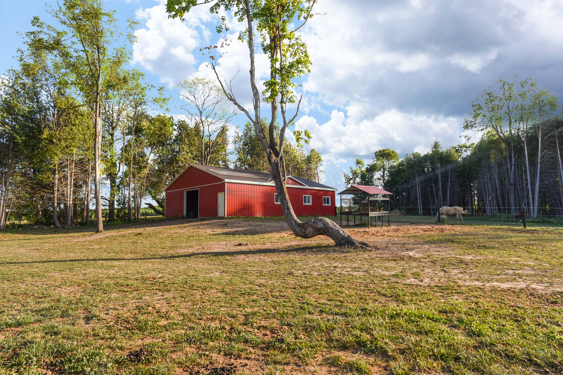 Hobby Farm For Sale, Shelburne, North of Orangeville