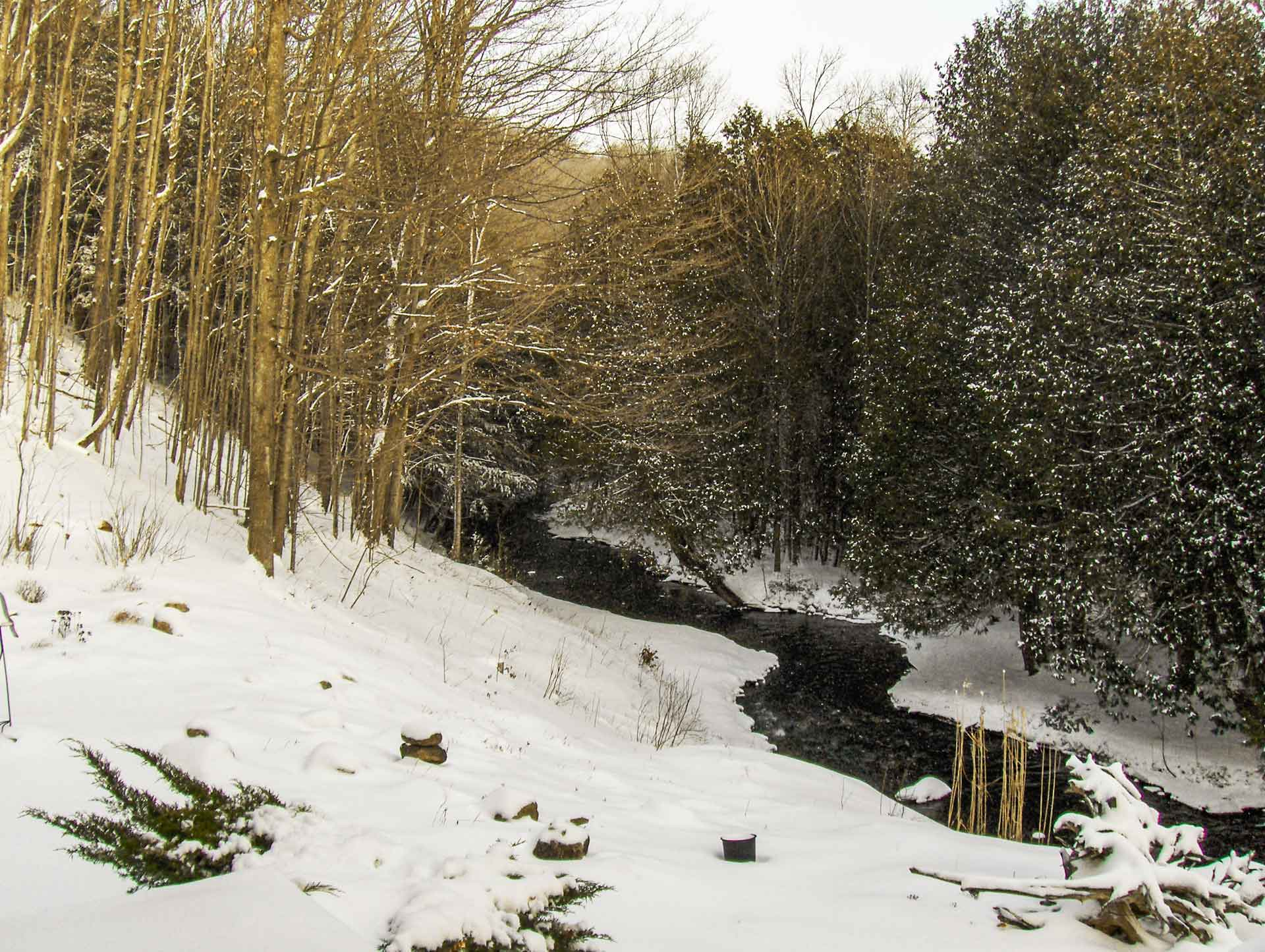 Winter, sheldon creek, mono