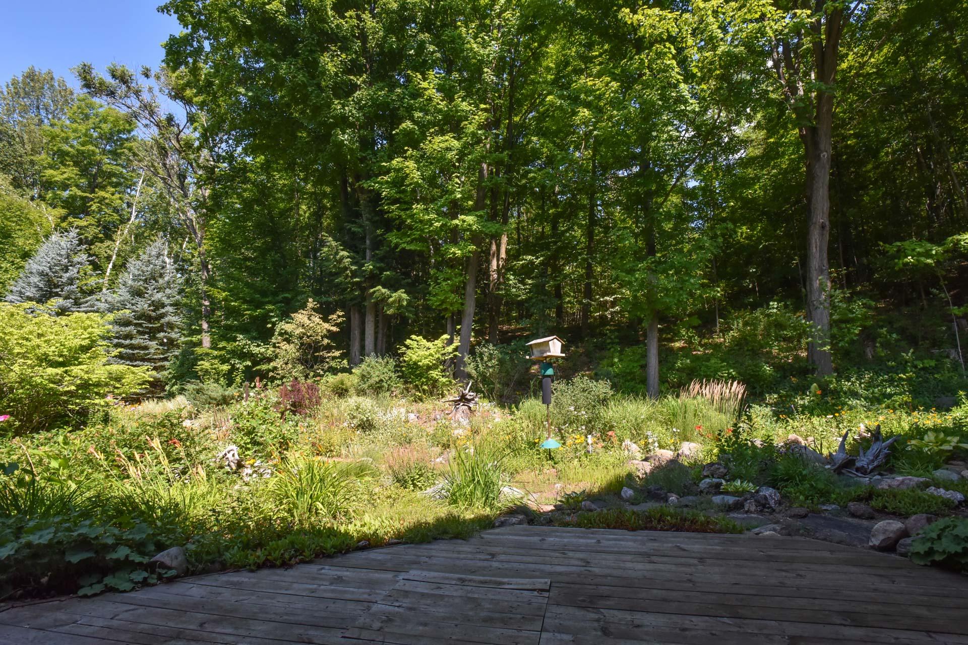 Back Deck, Gardens,