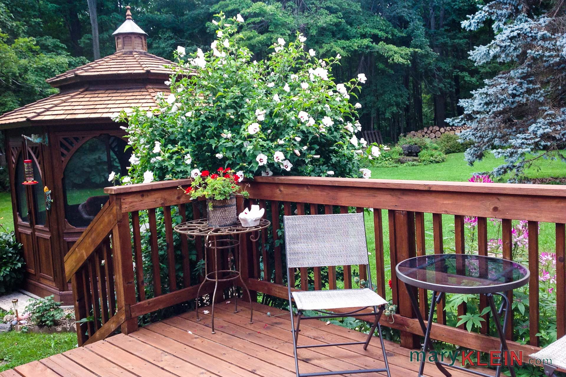 Kitchen walkout, gazebo